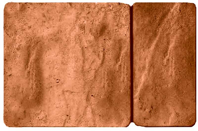 Брук комбинированный, коричневый, 50 мм